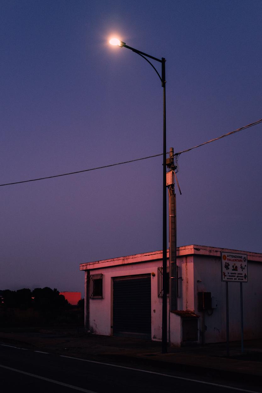 Twilight - Girasole