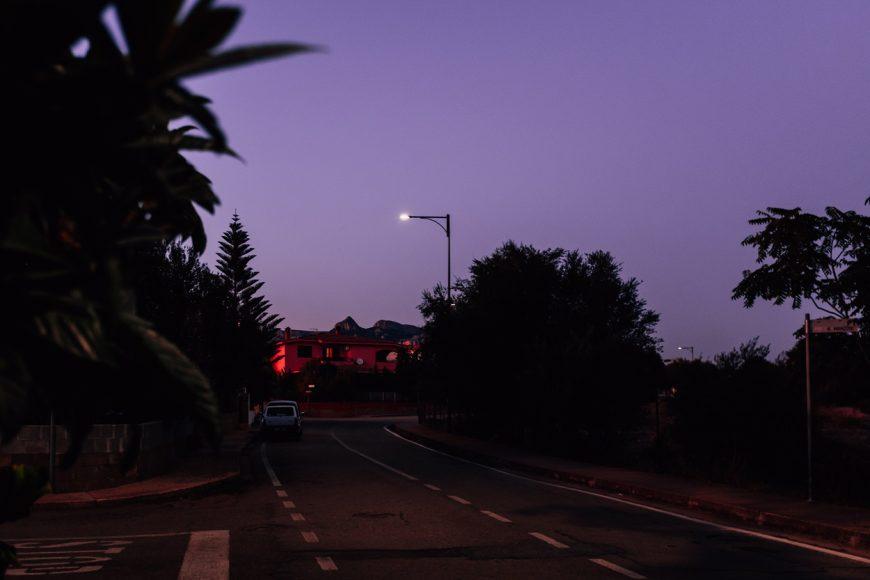 Twilight - Girasole 2